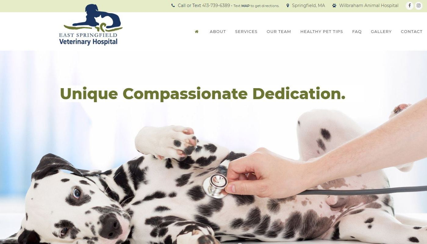 ESV Vet Hospital WordPress Website Design Worcester MA